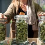 The Start of Cannabis Consultation in Nova Scotia